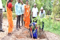 Planting Saplings by Director General Prof. Dr. K. Kanakavalli