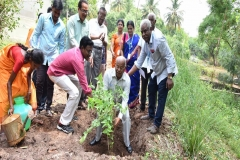 Planting Saplings by Prof. Dr. G. Veluchamy
