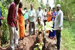 Planting Saplings by Prof. Dr. G. Ganapathy